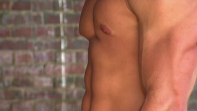 muscular male body - torso stock videos & royalty-free footage