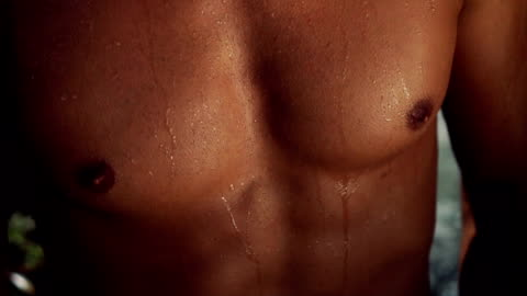 muskulösa män kropp - torso bildbanksvideor och videomaterial från bakom kulisserna
