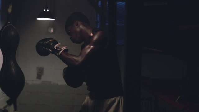 stockvideo's en b-roll-footage met a muscular young boxer trains by hitting a punching bag in a professional boxing gym - stootzak fitnessapparatuur