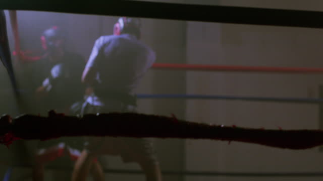 stockvideo's en b-roll-footage met muscular young boxers fight in a boxing ring in a professional boxing gym - stootzak fitnessapparatuur
