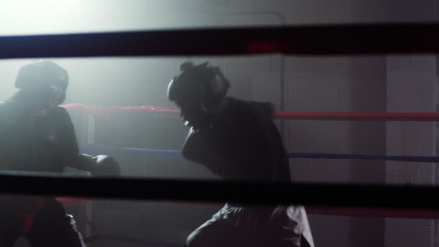 Two Boxers spar during a training match.