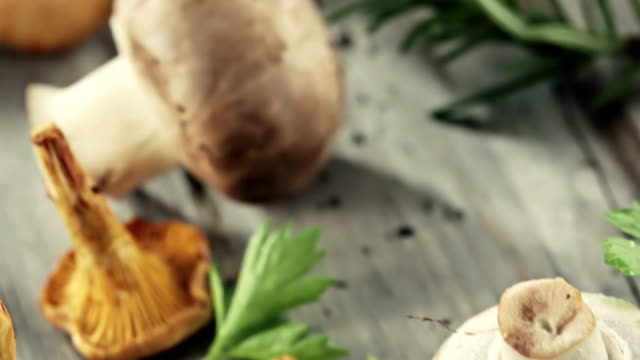vidéos et rushes de soupe aux champignons - groupe moyen d'objets