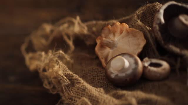 vídeos de stock e filmes b-roll de cu pan mushrooms in rustic setting / london, uk - portobello