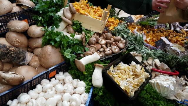mushrooms sold on food market - chanterelle stock videos & royalty-free footage