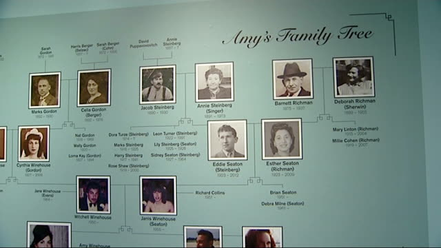 amy winehouse exhibition at london's jewish museum people looking at amy winehouse exhibition amy winehouse's family tree on wall amy winehouse's old... - family tree stock videos and b-roll footage