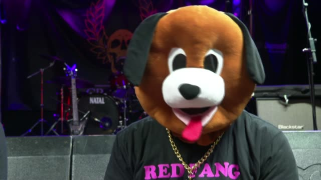 essex band 'slay duggee' sell out gig with heavy metal covers of kids songs england milton keynes the craufurd arms int brown dog interview sot... - dalmatian dog stock videos and b-roll footage