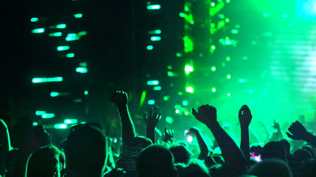 music festival crowd - 30 34 years stock videos & royalty-free footage