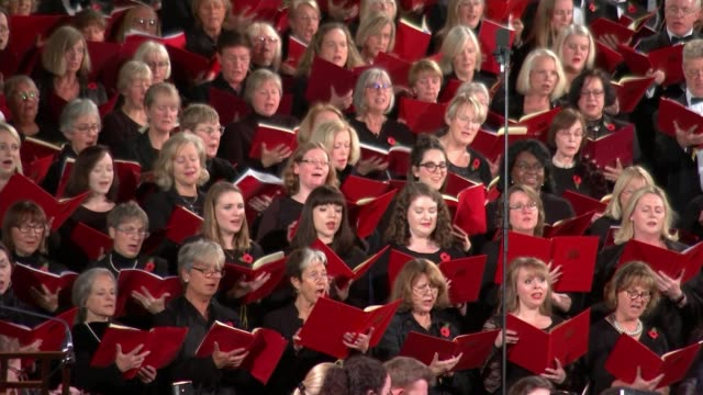 parliamentary choirs of britain and germany unite for armistice centenary; england: london: int various german and british parliamentary choir... - choir stock videos & royalty-free footage
