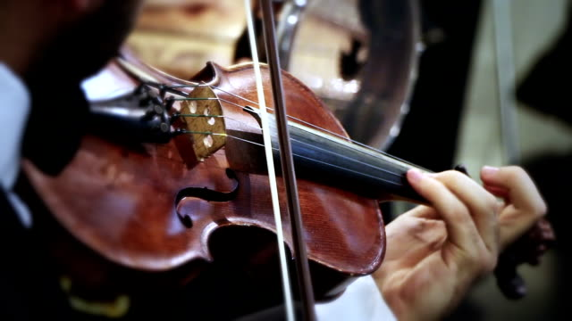 musician is playing the violin - violin stock videos & royalty-free footage