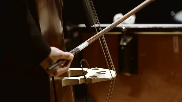 Musician playing double bass during concert