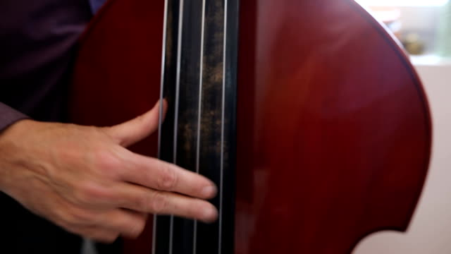 musician playing double bass next to the window - string instrument stock videos & royalty-free footage