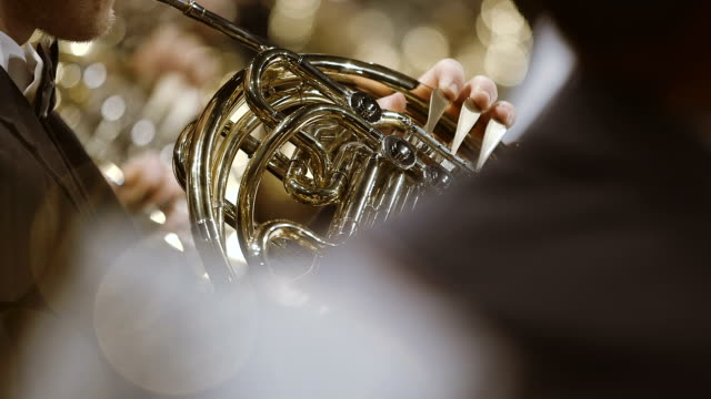 musician playing french horn during concert - french horn stock videos and b-roll footage
