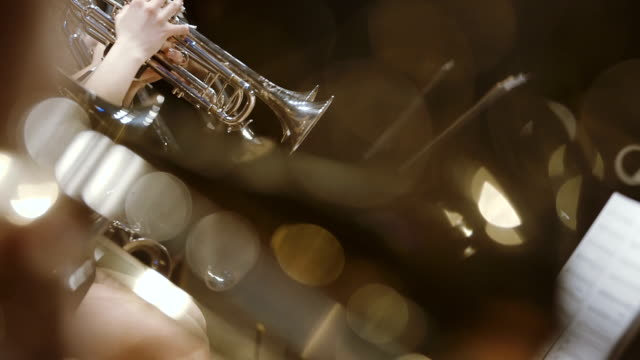 Musician playing French horn during concert