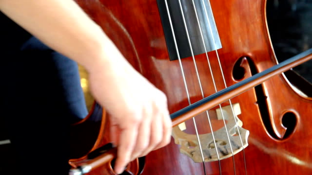 Musician playing the double bass.