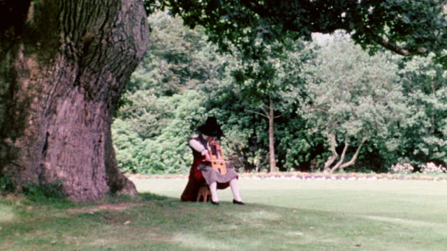 ZI Musician wearing a kilt and playing the violin under a massive old tree / Wales, United Kingdom