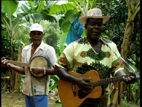 musicians playing guitar and banjo sing in banana plantation windward islands - calypso stock videos and b-roll footage