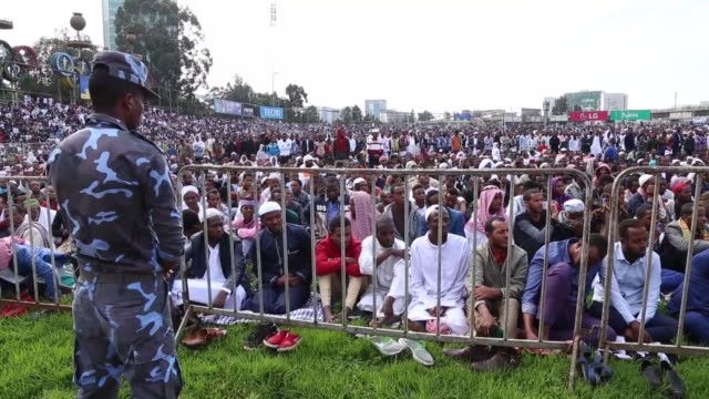 muslims perform eid prayer and exchange greetings at the addis ababa stadium on the first day of the muslim festival of eid aladha on august 11 2019... - four animals stock videos & royalty-free footage