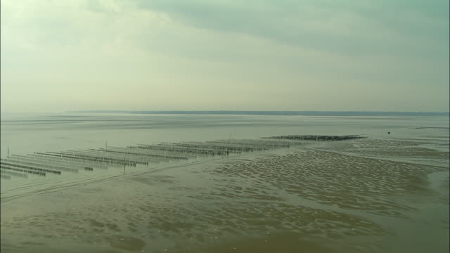 low aerial, mussel beds on utah beach , normandy, france - normandie stock-videos und b-roll-filmmaterial