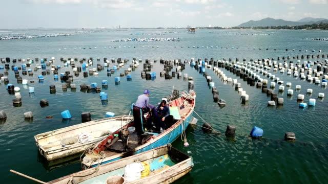 ムール貝をカヌーで海に捕まえるムール貝の漁師 - ムール貝点の映像素材/bロール