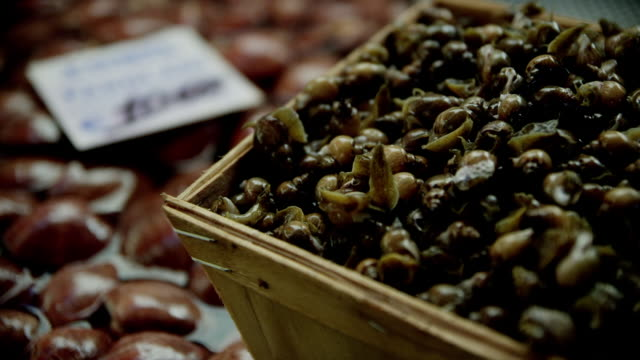 mussels and snails - cucina mediterranea video stock e b–roll