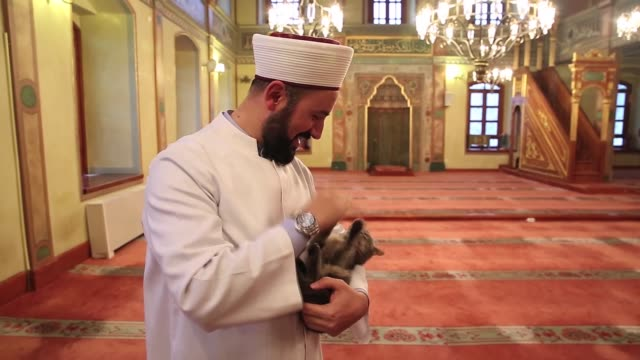 Mustafa Efe imam of Aziz Mahmud Hudayi Mosque takes care of stray cats inside the historic mosque in Uskudar district of Istanbul Turkey on January...