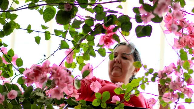 vídeos de stock, filmes e b-roll de meu jardim no sótão. mulher de meia idade - mulheres maduras