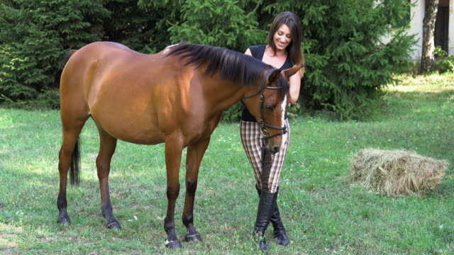 my loving friend - all horse riding stock videos and b-roll footage