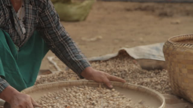 myanmar peanuts - human limb stock videos & royalty-free footage