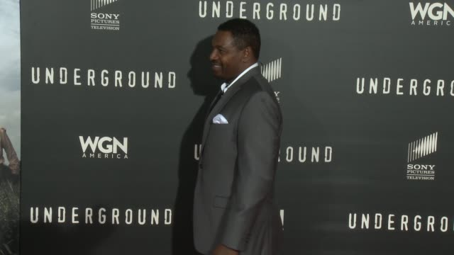"""mykelti williamson at wgn america's """"underground"""" los angeles premiere at the theatre at the ace hotel on march 02, 2016 in los angeles, california. - ミケルティ ウィリアムソン点の映像素材/bロール"""