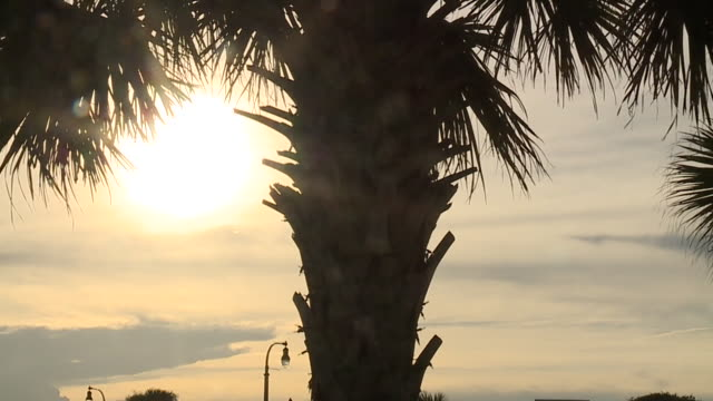 myrte beach south carolina usa on tuesday sep 12 2018 - carolina beach stock videos & royalty-free footage