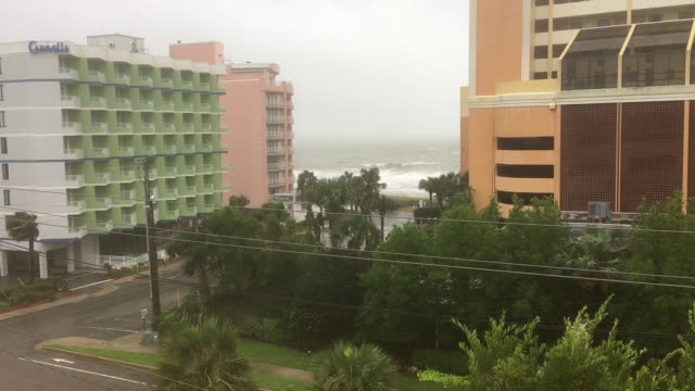 myrtle beach south carolina hurricane florence aftermath ocean beach fallen trees evacuated and boarded up buildings - myrtle beach stock videos & royalty-free footage