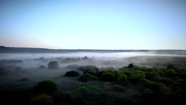 vídeos y material grabado en eventos de stock de un paisaje misterioso en la madrugada en una bruma de niebla de una vista de pájaro tomada con un dron. - paisaje espectacular