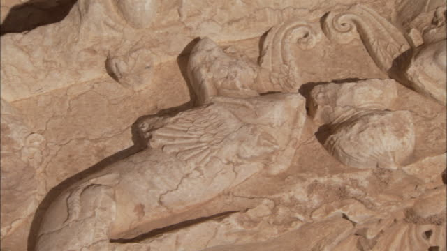 a mythological creature is carved into a stone slab in the ancient city of palmyra. available in hd - stone object stock videos and b-roll footage
