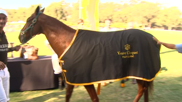 nacho figueras at fourth annual veuve clicquot polo classic los angeles benefiting will rogers state historic park on 10/5/2013 in pacific palisades,... - fourth occurrence stock videos & royalty-free footage