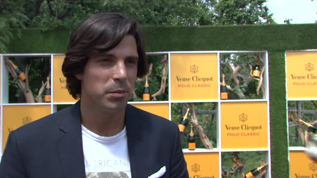 nacho figueras introduces the 5th polo classic at the fifth annual veuve clicquot polo classic at liberty state park on june 02 2012 in jersey city... - 動物を使うスポーツ点の映像素材/bロール