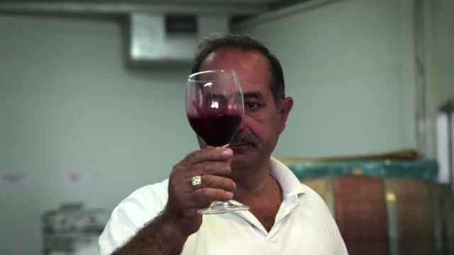 nadim khoury a monte il y a 20 ans la premiere brasserie palestinienne - famille stock videos and b-roll footage