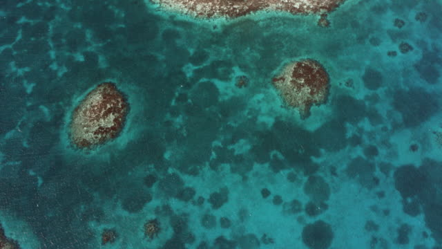vídeos de stock, filmes e b-roll de nadir shot over sea to blue hole of belize - mar do caribe