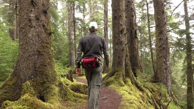 Naikoon Provincial Park spruce forest trail hiker man Haida Gwaii British Columbia Canada