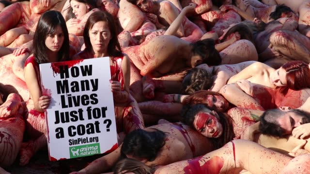 naked activists of the animal-rights group 'animanaturalis' covered with fake blood stage a protest to denounce the use of animal skins, in barcelona... - animal blood stock videos & royalty-free footage