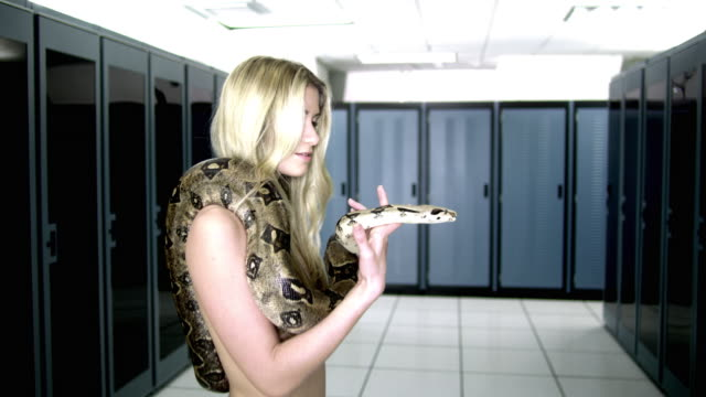 ws zi zo naked woman with snake in server room - naked stock videos & royalty-free footage
