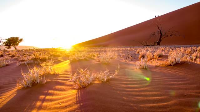 ds ws namibian desert at sunrise - namibian desert stock videos and b-roll footage