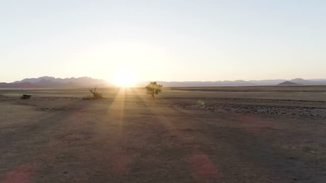 namibian desert during sunset. aerial view - dry stock videos and b-roll footage