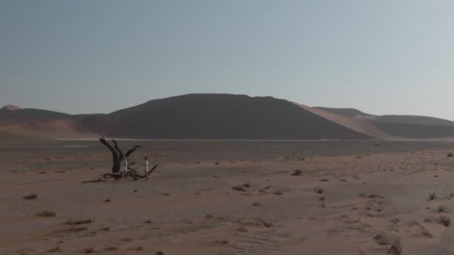 namibian desert - namibian desert stock videos and b-roll footage