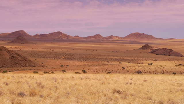 vídeos y material grabado en eventos de stock de paisaje de namibia - desierto del kalahari