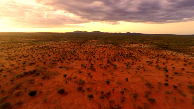 heli namibian landscape - grass area stock videos and b-roll footage