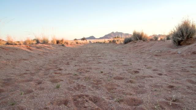 vídeos y material grabado en eventos de stock de la ds paisaje de namibia - estepa