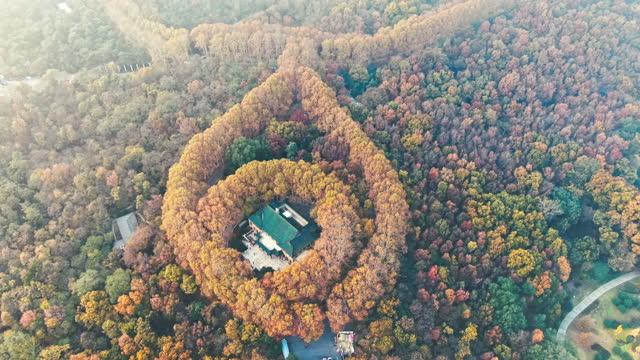 nanjing meiling palace at dusk - palace 個影片檔及 b 捲影像