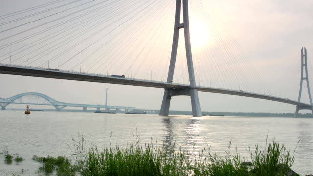 t/l ws zo nanjing third yangtze bridge / nanjing, china - nanjing stock videos & royalty-free footage