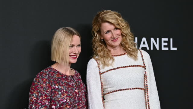 NY: 2019 Museum Of Modern Art Film Benefit: A Tribute To Laura Dern