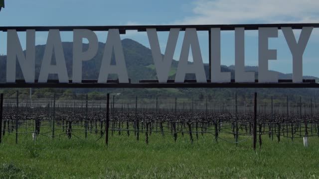 napa valley sign - grape stock videos & royalty-free footage
